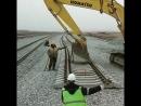 строим угольный склад в порту Ванино