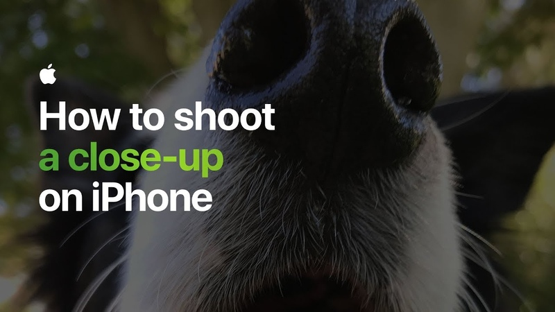 How to shoot a close-up on iPhone — Apple