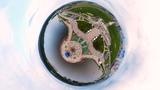 В Городе Спутнике состоялся День открытой астрономии