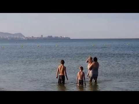 Дельфин - охота возле берега. АНАПА ВИТЯЗЕВО ДЖЕМЕТЕ