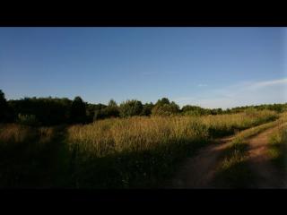 Новосокольники,деревни ,Андриановы,Бельчиковы 2017-07-26 под Аккордеон