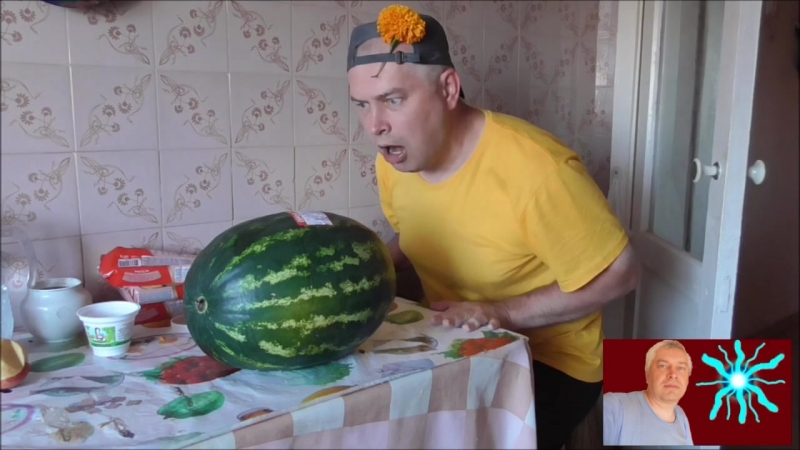 Новое шоу Геннадия Горина - ТРЭШ КУХНЯ НА КУХНЕ