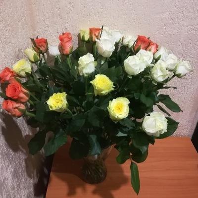 Ирина Гуц