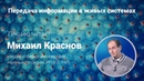 Михаил Краснов. Передача информации в живых системах