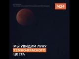 Красная Луна и яркий Марс.