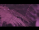 Премьера клипа 24.08.2018 / LIZER - Blessed (prod. by Ocean B) [SiGa]