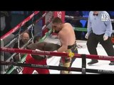 Sirenko vs Gogodo full fight (first round KO)