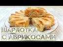 Шарлотка с абрикосами | ПП рецепт | Bombbar😋