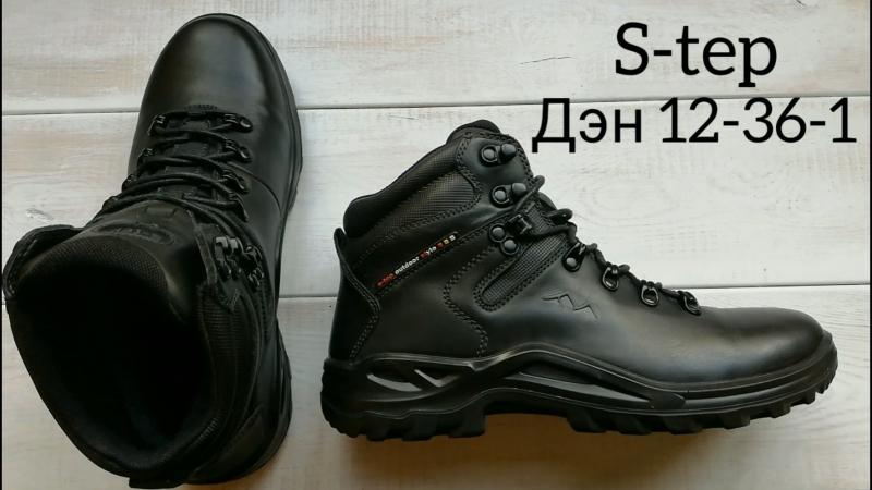 Дэн 12-36-1, мужские зимние ботинки, S-tep