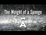 The Weight of a Sponge / ALIAS
