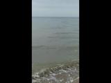 Азовское море. Май 18