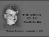 Леонард Бернстайн. Концерты для молодого поколения (молодёжи) 3. Звучание оркестра (14.12.1965)