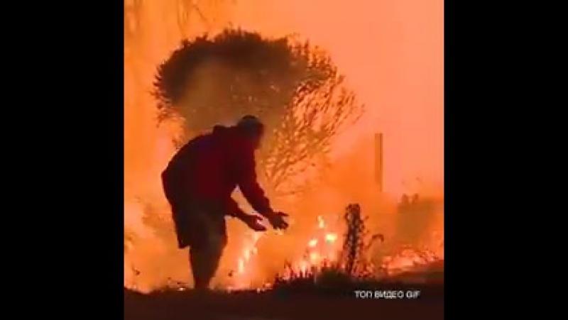 Этот человек во время пожара в Калифорнии,вытащил из огня дикого кролика 👍