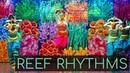 Reef Rhythms - Underwater Bharatanatyam | Kruti Dance Academy