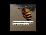 Мосводосток, Почта России, Bee Simulator
