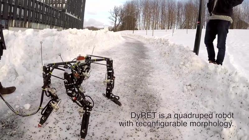 DyRET – первый робот, способный эволюционировать