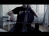 Парень сыграл на виолончели AVICII - Addicted to You
