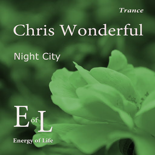 Chris Wonderful альбом Night City