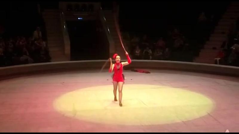 Отборочные выступления в цирке