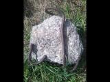 подъём камня мизинцем. Примерно 27 кг