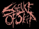 Science Of Sleep - Fraudulent Misrepresentation New Song! HQ 2012