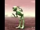 Чумовой танец от гибрида лягухи и кузнечика😁