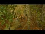 Королевство полной луны (трейлер)