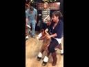 Pony Ride!
