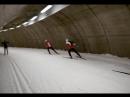 Мужская сборная Норвегии по Лыжным гонкам