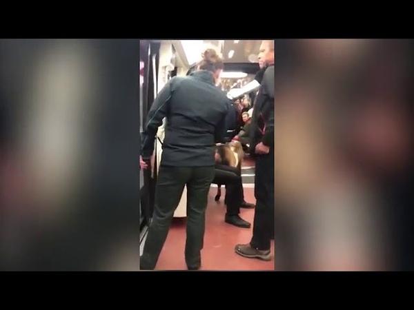пассажир с козлом вызвал коллапс в метро Парижа