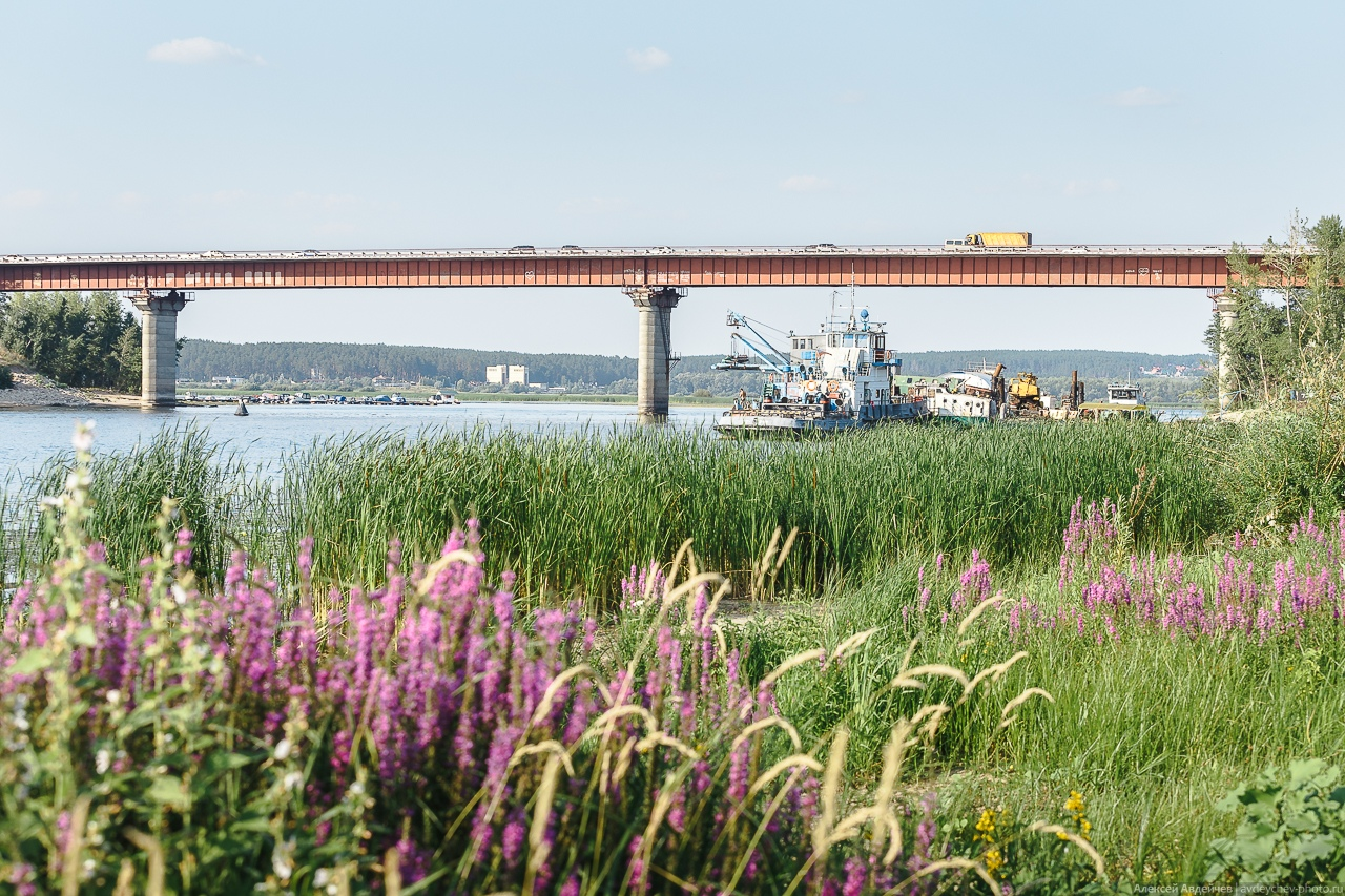 Сокский мост