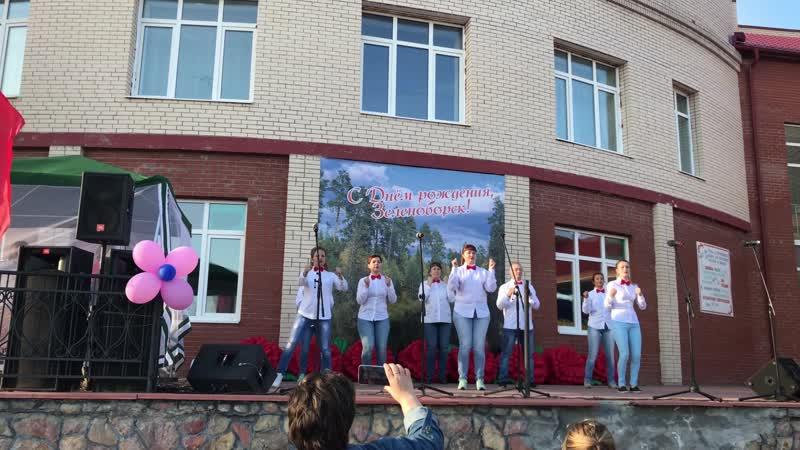 55-летие г.п. Зеленоборск конкурс флеш-мобов, коллектив МБОУ СОШ п. Зеленоборск