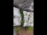 гора Малиновая, охота за Сокровищами Терра Башкирия в прямом эфире