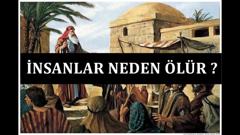 Hz. Musa'ın Allah'a Neden İnsanların Canlarını Aldığını Sorması I Mesnevi'den Hikayeler