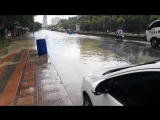 Сезон дождей 1