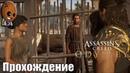 Assassin's Creed Odyssey - Прохождение 98➤Гейтор и его друзья. Семейные ценности. Конфискация.