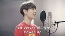 Red Velvet 레드벨벳 'Power Up' Cover by Dragon Stone