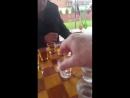 Шашки,водка и коняк