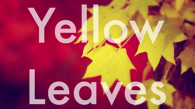 ნატო მეტონიძე და ნიკოლოზ რაჭველი ყვითელი