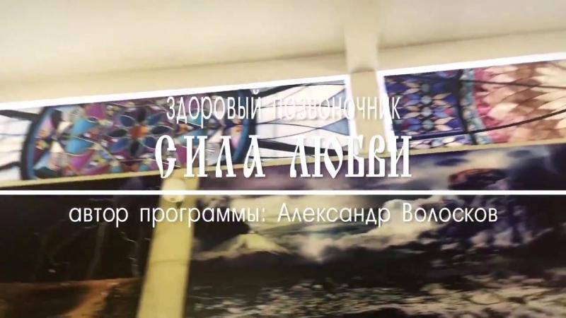 Здоровый позвоночник Сила Любви Александр Волосков.