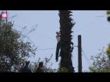 Superheroine training! Brie Larson filming Captain Marvel in LA - Daily Mail