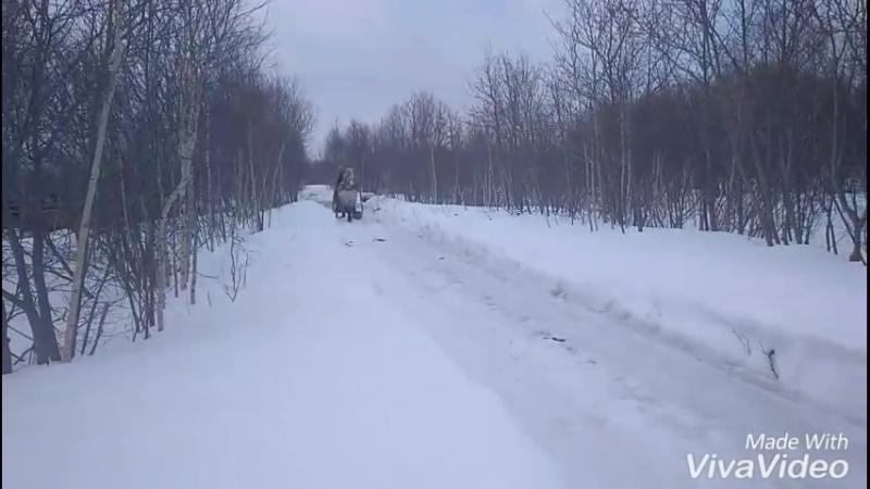 В городе грязь и слякоть, а у нас искрящийся снег и зимние забавы;)  Гром встал в сани) красивый, взрослый уже совсем, конь науч