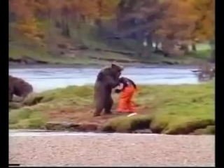 John West Salmon Bear Fight ad