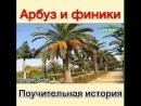 VID_24211027_021300_175.mp4