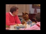 Alf Quote Season 4 Episode 5_Альф и Вилли