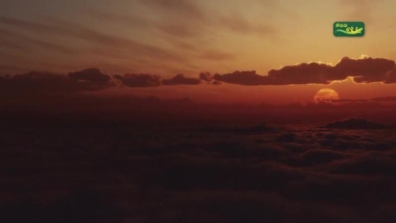Borealis – Wandering Atrial