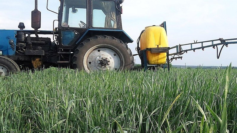Полупар. 2-е опрыскивание пшеницы. Выращивание пшеницы 17.05.2018г. СельхозТехника ТВ