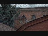 Контрафактная «Виагра», потоп в Кировском и бессмертная шаверма. Отдел происшествий 20.11.2018. Невские новости