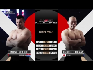 Mirko Cro Cop vs Tsuyoshi Kosaka - Rizin 2017