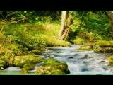 Шикарно! Relaxing Music- ДиДюЛя популярнее, но это лучше! Yakuro. МУЗЫКА ДЛЯ ДУШ